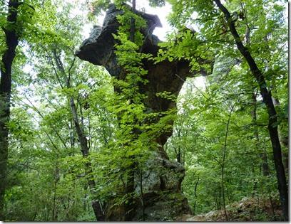 Pedestral Rocks AR