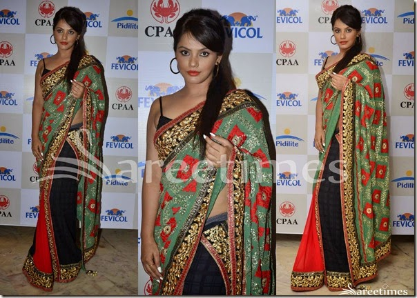 Neetu_Chandra_Tricolor_Saree