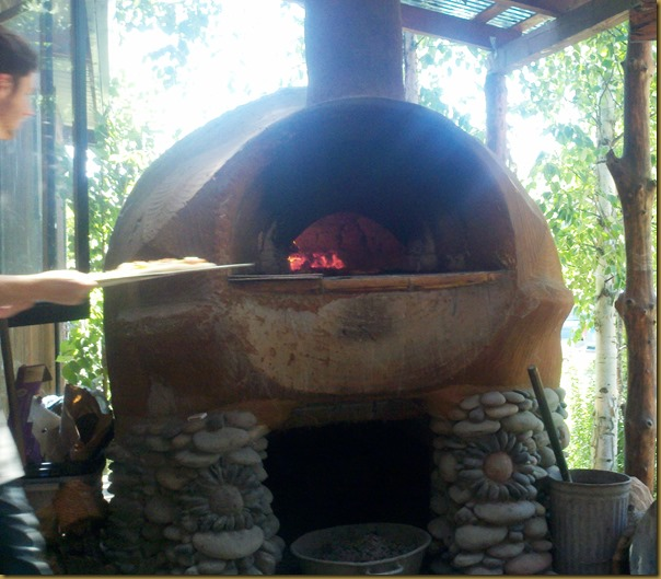 gtf pizza oven2