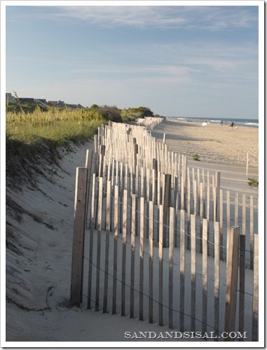 beach fence