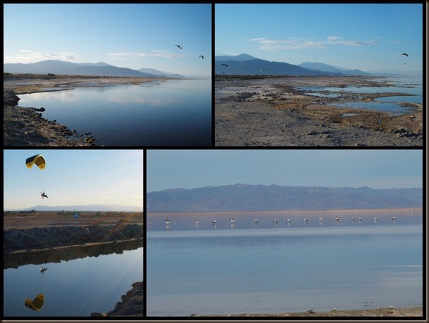 Winter at Salton Sea 2012