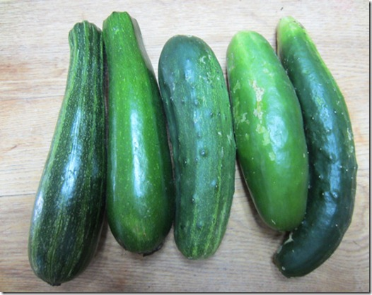 Dunja zucchini, Diva cukes and a Summer Dance on right
