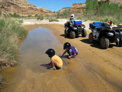 Playing with tadpoles at a spring in the South Fork of Coal Wash