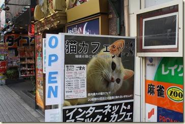 Tokyo 2013 195