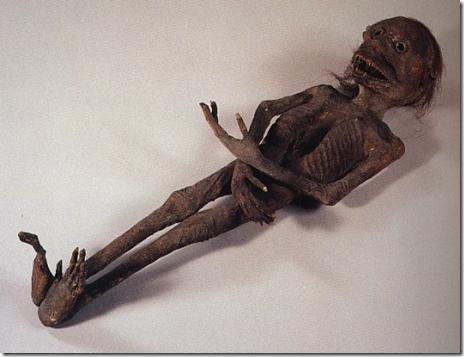 Criatura momificada
