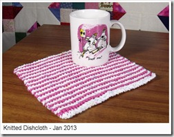 Dishcloth-Jan2013