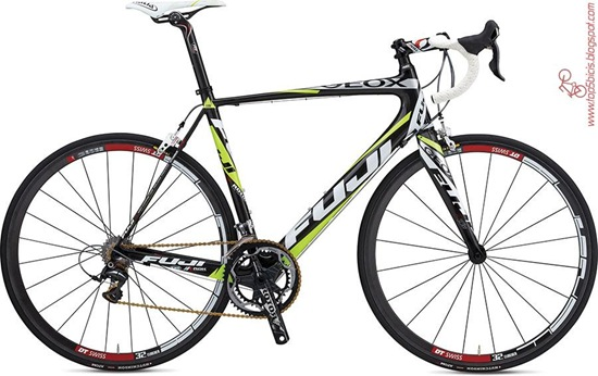 Fuji  ALTAMIRA LTD TEAM EDITION