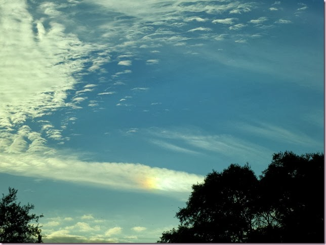 RainbowIMG_0468