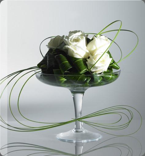 leaves elegance the black rose uk
