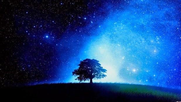 11018-tree-starry-night