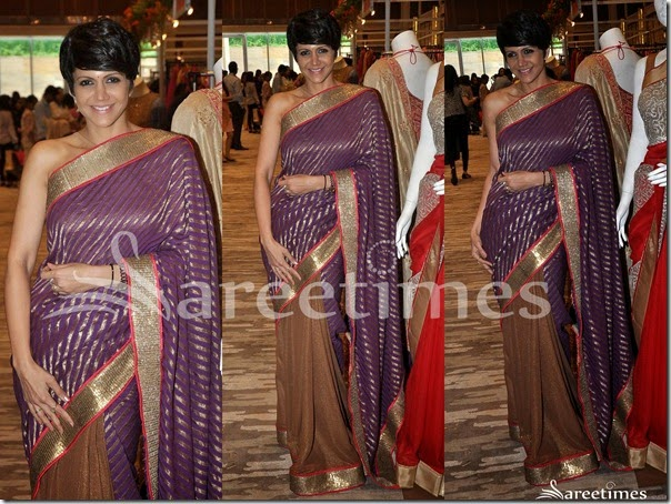 Mandira_Bedi_Purple_Brown_Half_and_Half_Saree