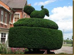 IMG_0005 Fleckney Topiary