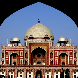 Humayun's Tomb by Pranjal Jain - Buildings & Architecture Statues & Monuments ( tomb, india, monument, historical, delhi,  )