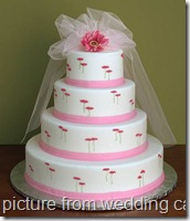 wedding cakes amazing