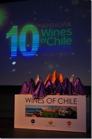 wines-of-chile-2013-vinhoedelicias