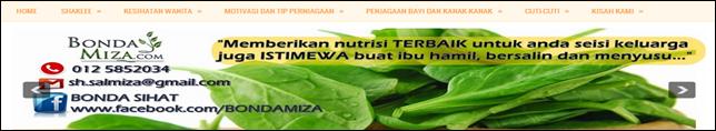 Blog Bonda Miza