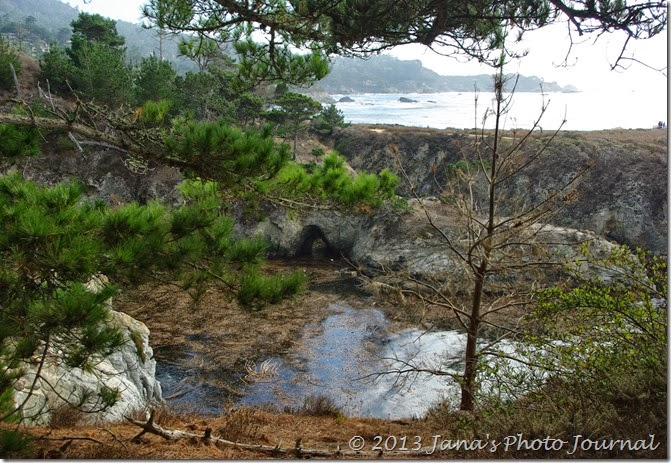 View from Bird Island Trail, Point Lobos, California