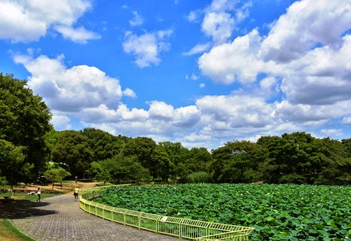 2 b- Glória Ishizaka - Jardim Botânico Nagai - Osaka