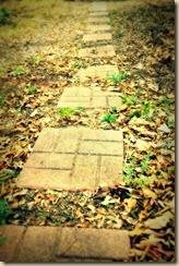 24.  Path