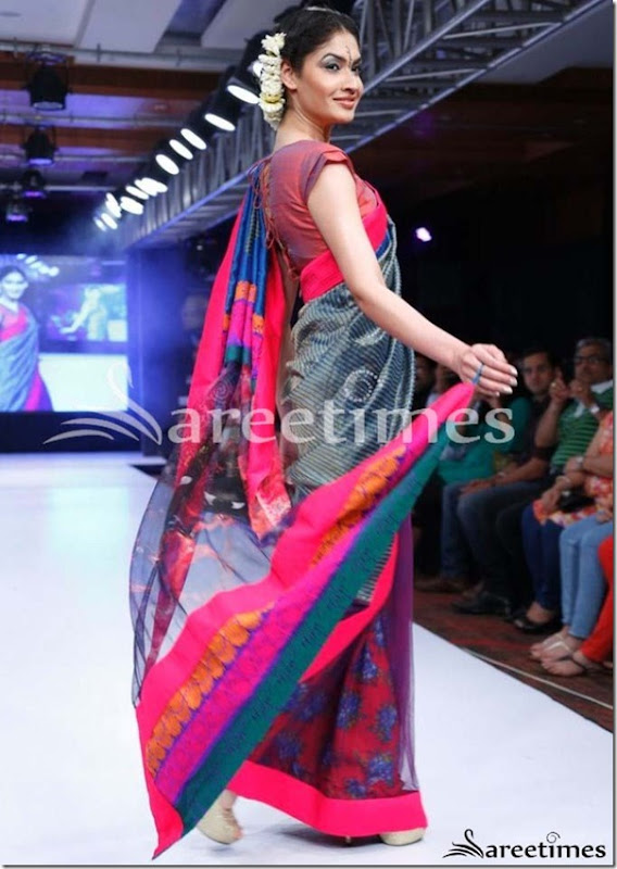 Green_Purple_Half_and_Half_Saree(1)
