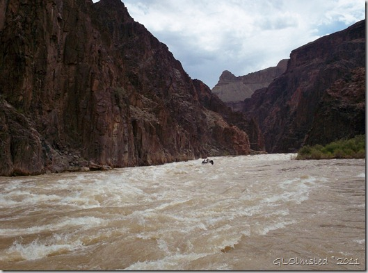 Looking up river at Hermit Rapid ~RM95.5 Colorado River Grand Canyon National Park Arizona