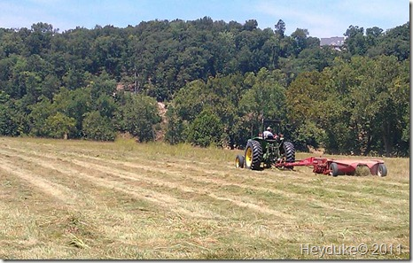 2011-08-02 Making hay in Toms Brook VA 009
