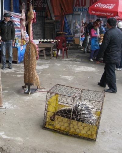 le-hoi-chua-huong (2)