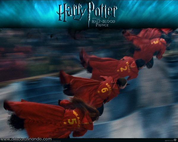 Harry-Potter-and-the-Half-Blood-Prince-Wallpaper-principe-mestiço-desbaratinando (24)