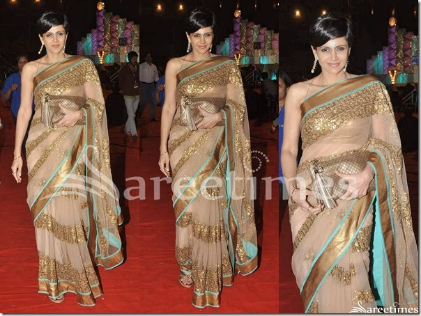 Mandira_Bedi_Cream_Net_Saree