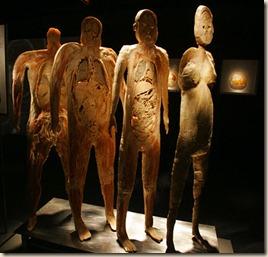 bodies9_42-16041510