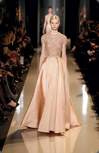 wedding dress554388_10150278513899999_445070069_n elie saab