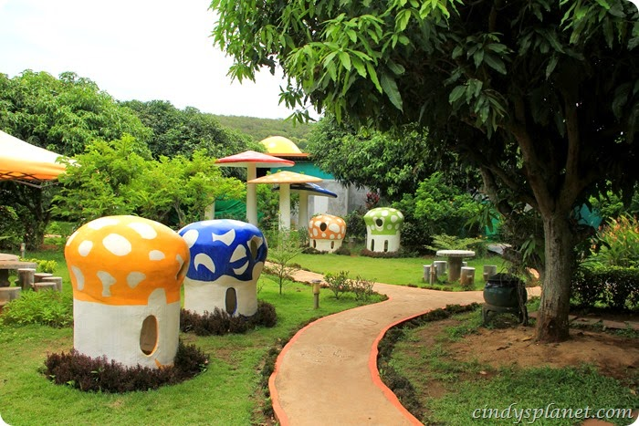 khao yai panorama farm (9)
