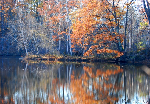 3. Kennebec backwater-kab