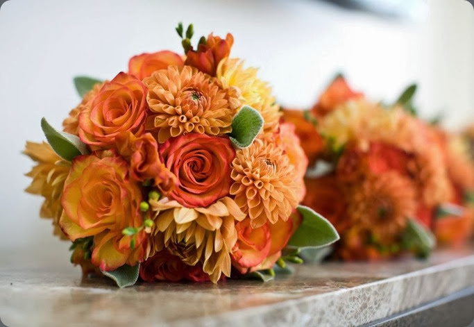 483385_10151099934603524_1379331747_n panacea flowers and jennifer rodriquez photo