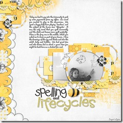 930 SnS-SpellingLifecycles