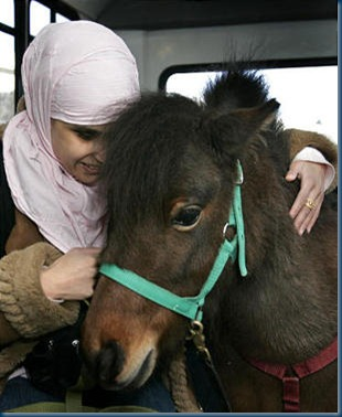 Mona Ramouni, a Muslim, rides a bus to her job at K&R Braille Transcribing with her guide horse, Cali, in nearby Lincoln Park, Mich.