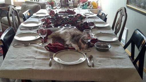 Пироги с котятками