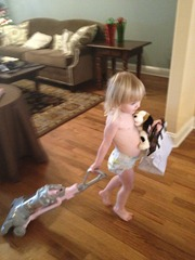 vet- vacuuming