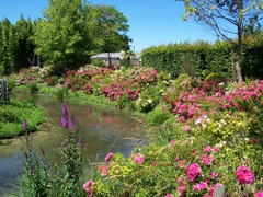 2011.07.01-022 jardin exotique et aquatique