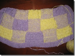 Purple_Yellow_Knit_Blanket_03-31-2010