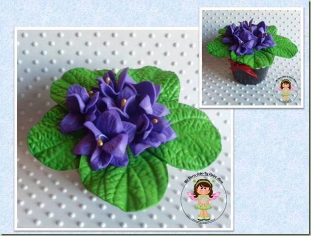 Flor Violeta