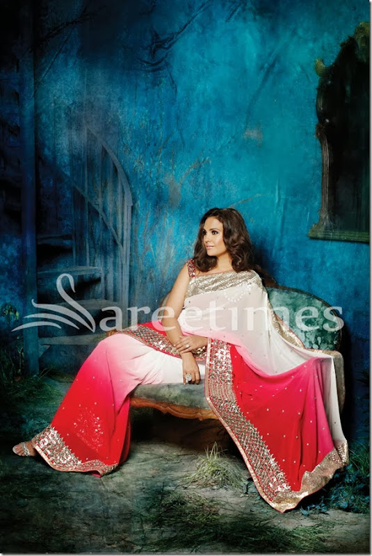 LD-40: This pure georgette saree exudes charm and vivacity through its distinctive ombre effect through the drape. A broad Gota border coupled with sequin clusters sprinkled along the length create a sparkling vision of finesse. The contrast red Gota blouse completes the look of the ensemble.