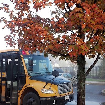 霧とスクールバスと紅葉
