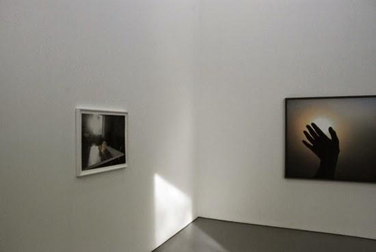 gallery riis
