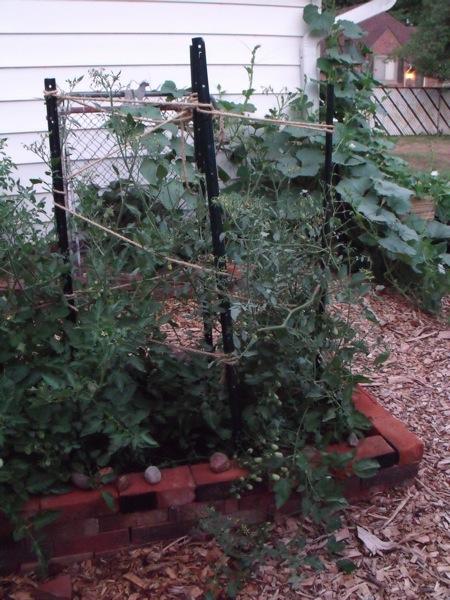 20120709 garden 007