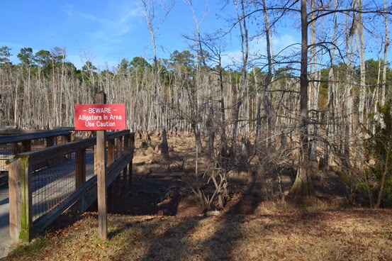 Sam Houston SP_023