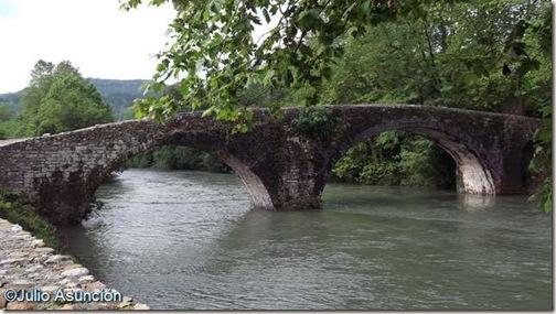 Puente de San Miguel desde la orilla de Bera