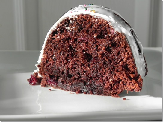 chocolate-cherry-bundt-cake-bundt-a-month-2