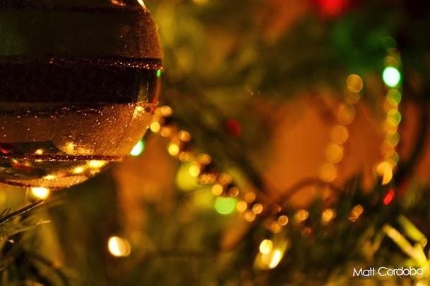Natal árvore pinheiro