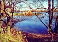 gwenynbore_blog22